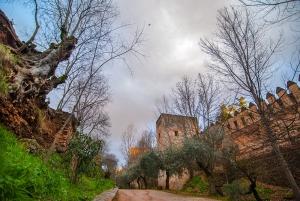 foto-alhambra01