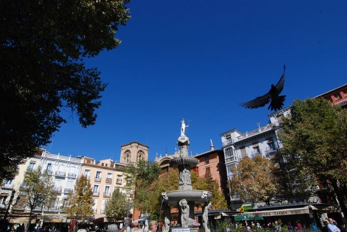 Plaza bibrambla Granada