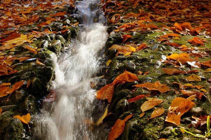 Los caminos del agua Alhambra Granada